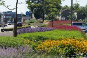GreentoColour_Boxmeer_34-1-460x290